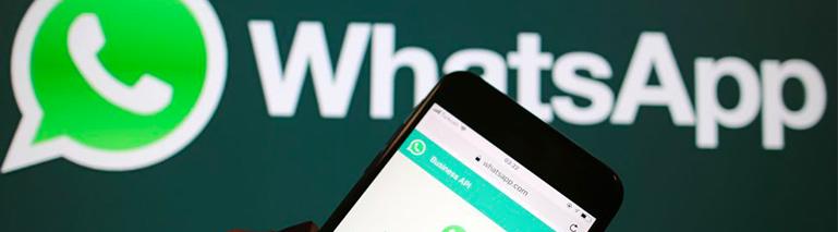 Whatsapp Electro Premium